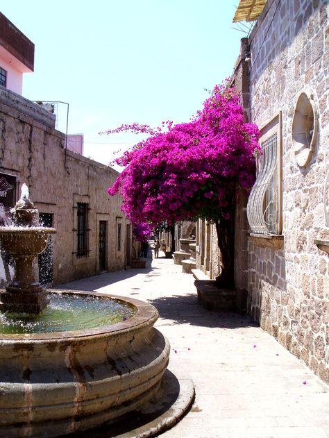 Callejón del Romance, Morelia, Michoacán. México Pinner says: My mom's city! Look at the bugambilias native to Mexico.