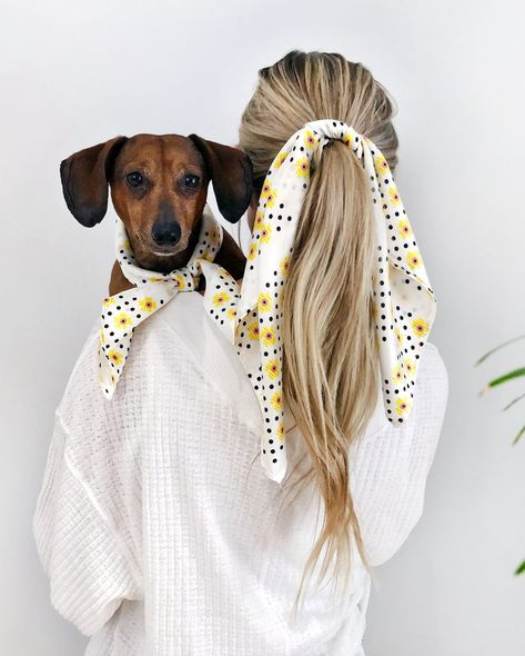 Matching Silk Bandana Scarves for Dogs and People by Dog Threads — Dog Threads™