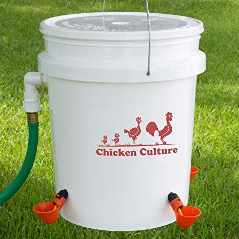 Automatic Poultry Bucket Watering Kit Water Drinking Cups For Chickens W Float 4 Cups Chicken Waterer Chickens Backyard Chicken Waterer Diy