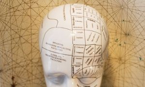 Seek and you will find: why curiosity is key to personal and national success | Ian Leslie