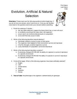 Evolution Natural Selection Artificial Selection Worksheet Or