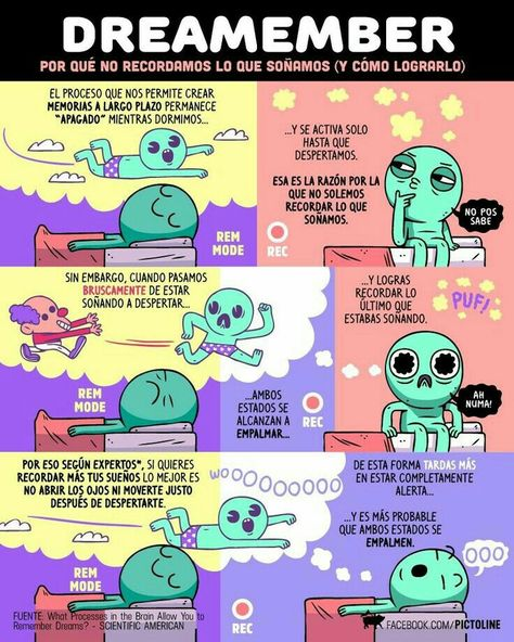 400 Lunes Loco Ideas Curious Facts Fun Facts Facts