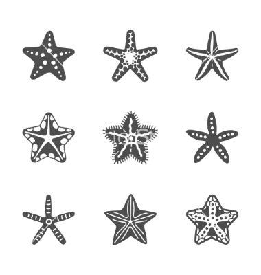 Shape set of various sea starfish on VectorStock