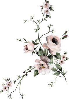 Blush Aesthetic Flower Freckles Filter Flower Art