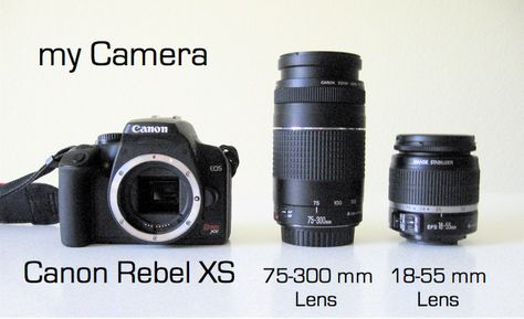 FAQs: Camera | MADE << This is a really fantastic guide on DSLR cameras for people getting started :)