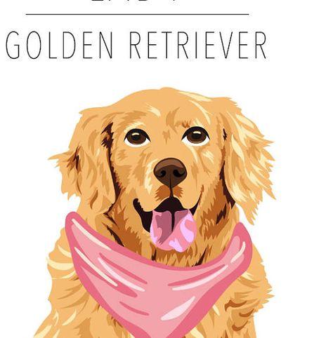 Dog Portrait Golden Retriever Pet Portrait Clip Art Dog Portraits