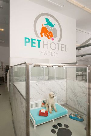 Pet Hotel Hadley Is A Unique Upscale Boarding Kennel In Ma That Incorporated Marble Wilson Art Look With Gl Stall Fronts And K9 Cabins