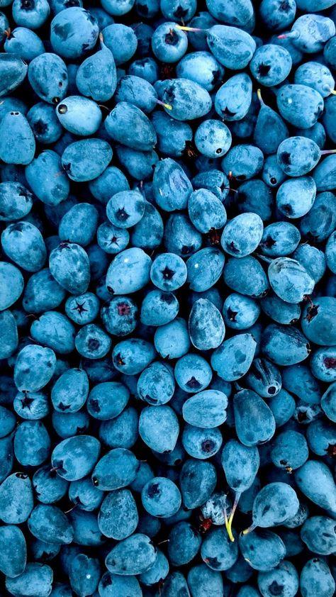 Abundance, fruit, blueberries, 720x1280 wallpaper