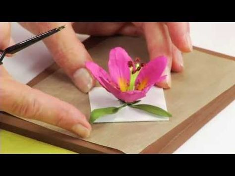 How to Use Sizzix Thinlits Lily Flower Die 658275 - YouTube