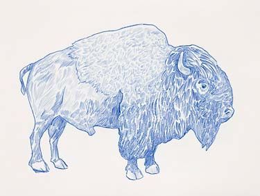 Image Result For Dave Eggers Print Buffalo Dave Eggers Lithograph Art