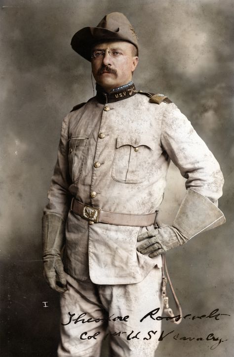 Top quotes by Theodore Roosevelt-https://s-media-cache-ak0.pinimg.com/474x/e7/38/ef/e738ef36aaaa63367f927509dac1aad5.jpg