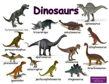 All About Dinosaurs Dinosaur Dinosaur Posters Science Poster Contribute to junosuarez/dinosaurs development by creating an account on github. dinosaur dinosaur posters