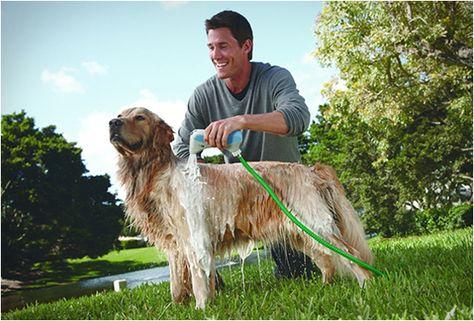 Rapidbath Pet Bathing System Dogs Dog Wash Pets
