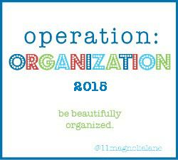 Operation: Organization a series of organizing projects from favorite bloggers--Starts Friday!