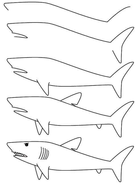 How To Draw Step By Step Learn How To Draw A Shark With Simple