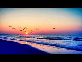 Musica Para Dormir Y Relajarse Sueño Profundo 180 Minutos De Relajacion Youtube Música De Meditación Musica Relajante Musica Para Relajarse
