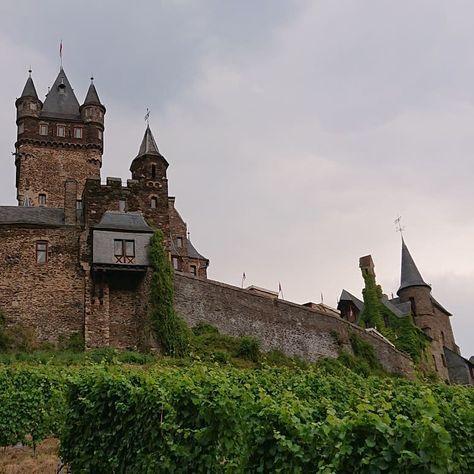 Die Reichsburg in Cochem 🏰 #rheinlandpfalz #cochem #mosel #schiff #wasser #burg #reichsburg #berge #weinberg #türme #blumen #blüten #pflanzen #bepflanzt #steinmauer #häuser #ausflug #torbogen #ausblick #brücke #steintreppe #bäume