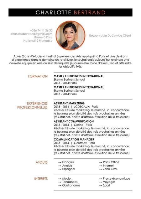 Cv En Ligne Cv Designer Curriculum Vitae Cv Cv En Ligne Cv Parfait Curriculum Vitae