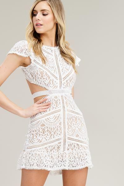 Claire Lace Cutout Dress White Lace Cutout Mini Dress Lace Cutout Dress Short Sleeve Dresses Lace White Dress