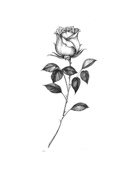 Chronic Ink Tätowierung Cindy Tattoo Blumenmuster im asiatischen Stil #flowertattoos   #flowertattoo