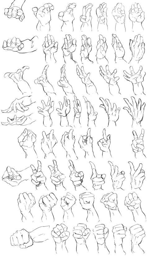手足の資料(トレス) [3]
