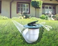 Pin Auf Landscaping