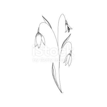 Snowdrop Flower White Tattoo Google Search In 2020 White Tattoo Moutain Tattoos Piercing Tattoo