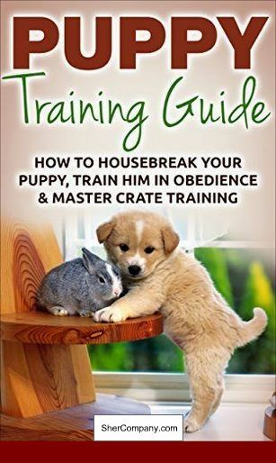 How Do I Train My Dog Not To Bark So Much Dog Puppytraining
