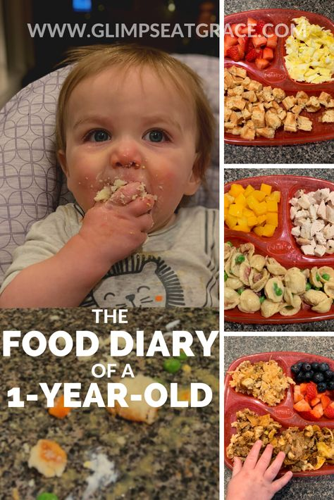 Healthy Toddler Meals, Toddler Lunches, Kids Meals, Toddler Food, Toddler Menu, Toddler Dinner Recipes, Easy Toddler Snacks, Toddler Dinners, Healthy Kids