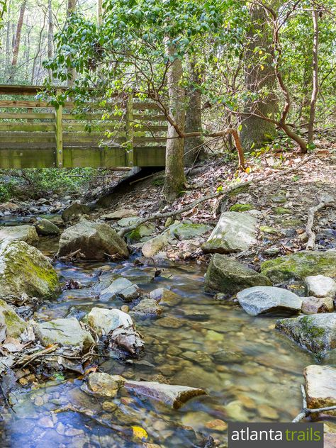 The Pine Mountain Trail explores a rocky, stream-filled forest near Allatoona Lake, north of Atlanta