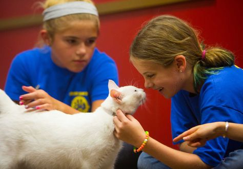 Local kids learn about rescued animals during the Houston SPCA Critter Camp