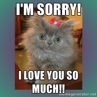 I M Sorry I Love You So Much And 10 More Purrfect I M Sorry Memes Sorry Memes I Miss You Meme Missing You Memes