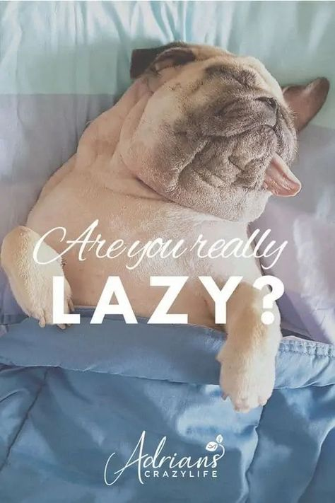 Fascinating Question - Are You REALLY Lazy?