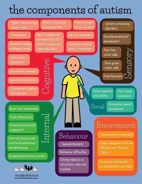 Autism printable about the components of autism and what to watch for or understand #autismawareness