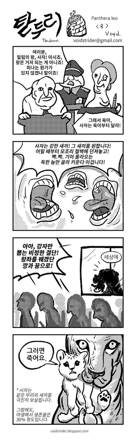 사자는 새끼를 엄하게 키운다고 주장하는 만화 네이버 블로그 2019 만화 및 유머