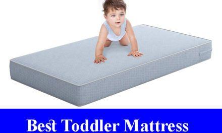 Best 12 Inch Memory Foam Mattress Beds Reviews Updated All Time Reviews Toddler Mattress Mattresses Reviews Mattress