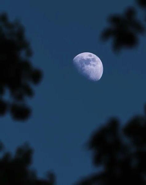 낮도 길어지고 더위도 심해지는  무서운 여름이 다가왔네요..😂  #night #chill #relax #nature