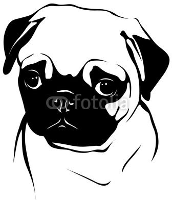 Pug Face Silhouette Photos And Images For Royalty Free Use