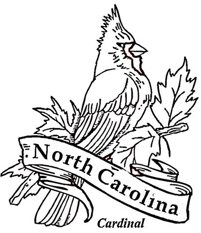 Cardinal Bird Of North Carolina Coloring Page Coloring Pages