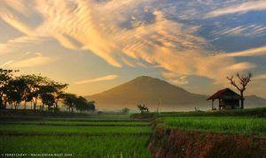 Gunung Ciremai Objek Wisata Alam Dengan Margasatwa Beragam Pemandangan Taman Nasional Alam