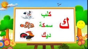 حروف اللغة العربية حرف ك Novelty Sign Learning Arabic Character
