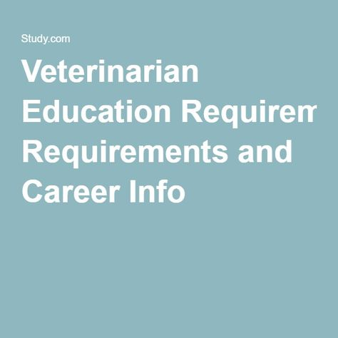 Veterinarian Education Requirements and Career Info