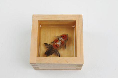 Riusuke Fukahori Gallery | riusuke fukahori's intricately painted goldfish