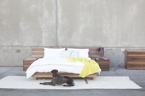 Man's best friend and an HD Buttercup bedroom set.  #HDButtercupxgoop