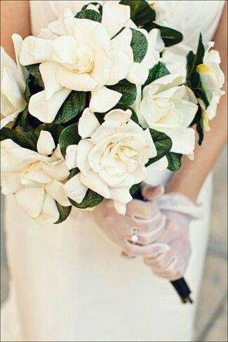 Bridal Bouquet Of White Gardenias Dark Emerald Foliage Gardenia Wedding Bridal Flowers Gardenia Bridal Bouquet