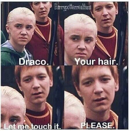 Funny Memes And Harry Potter Humor For Fans Or Haters Of Draco Malfoy Harrypotterhum Draco Harry Potter Harry Potter Lustig Lustige Harry Potter Zitate