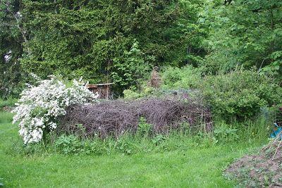Wildes Gartengluck Totholzhecke Benjeshecke Anlegen Weidenzaun Hecke Naturgarten