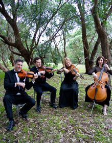 String Quartet Sydney Wedding Music