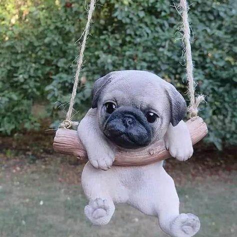 "If you 👍 and ❤  it please 👍 and 💬 😍😍 If you like it say ""yes"" 👉 Cute pug 🥰🥰🥰 👉 Addiction For Pug 👉 Please follow >>> @funny.dog.lovers ------------------------------------------------------------ #pug #pugs #cutepug #cutepugs #pugsofinstagram #dog #dogsofinstagram #puglife #puglove #pugstagram #puppy #puglovers #pugpuppy #dogs #instadog #dogstagram #instapug #pugsnotdrugs #puglover #pets #puppiesofinstagram #blackpug #puggy #cute #pugworld #dogsofinsta #pugclub #lovepugs #funnydoglove"