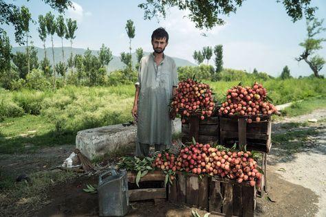 Punjabi Culture Images   Punjabi culture, Culture, Image